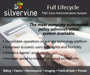 Silvervine Software Banner